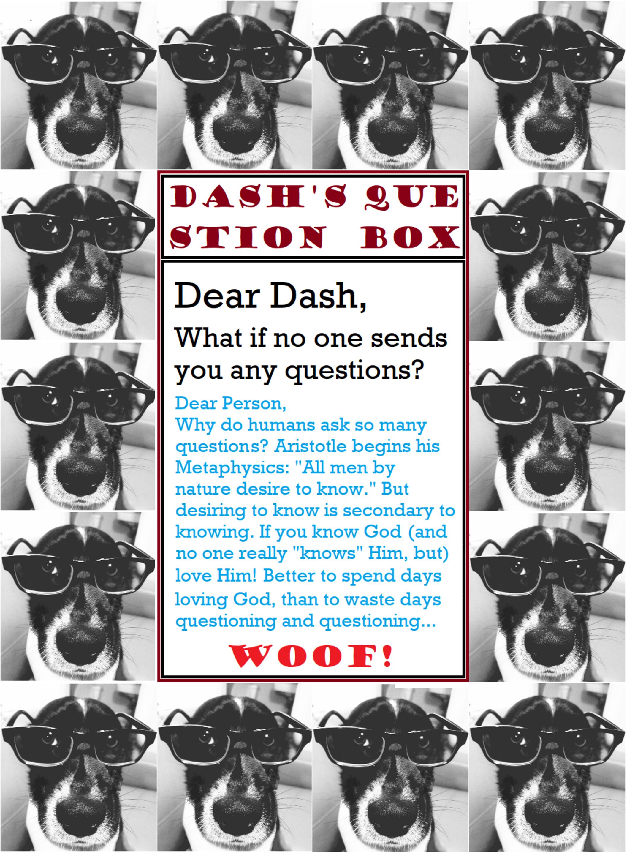 Dashs Den Aug 9 2020