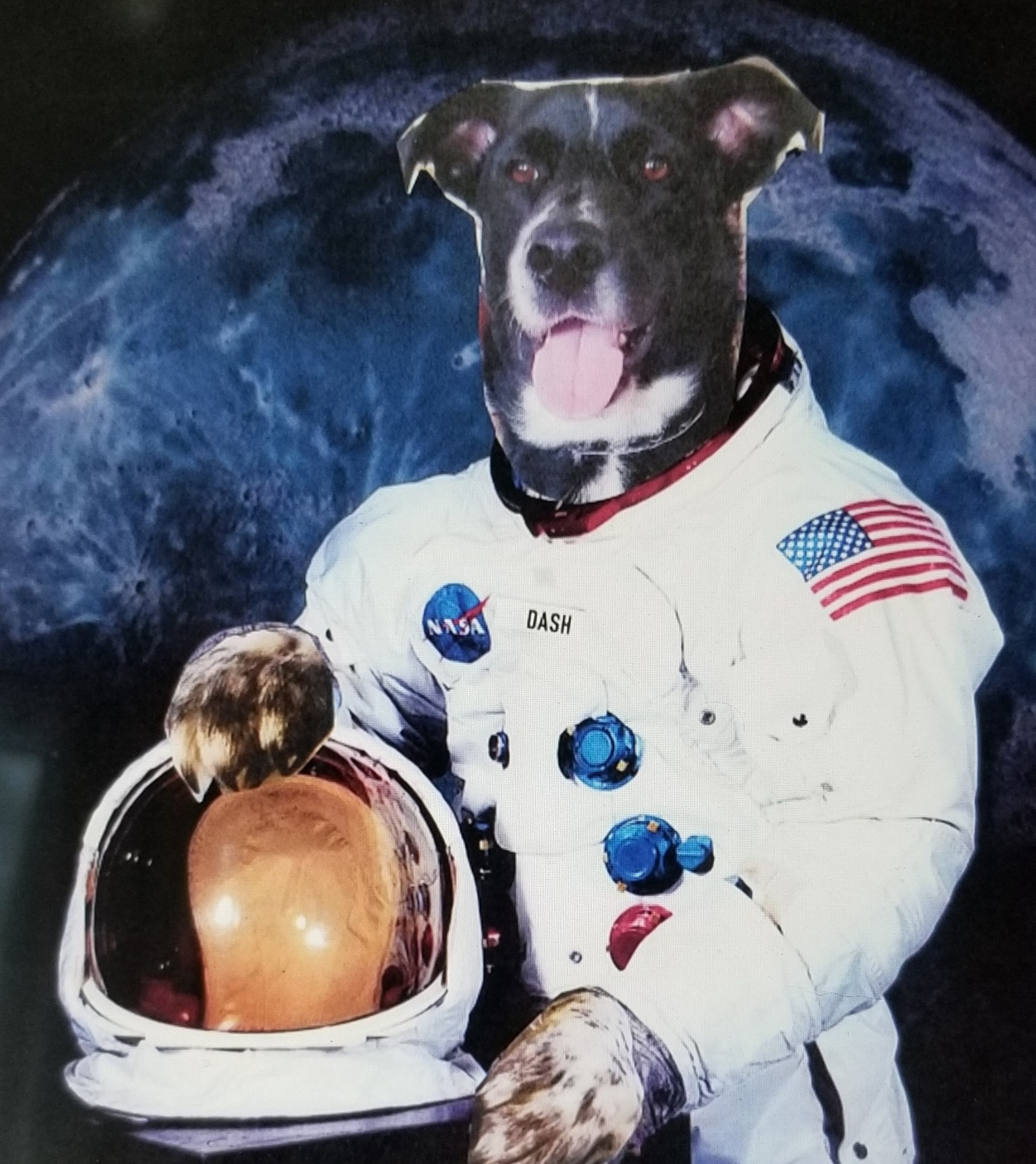 Dashstronaut
